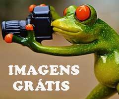 Sites de Bancos de Imagens Gratis