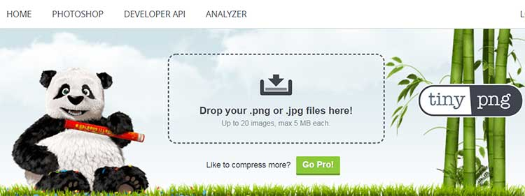Home page Tiny PNG Comprimir fotos