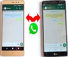 Dois celulares com a mesma conta Whatsapp instalada